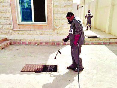 Photo of 2088 طلبَ مكافحة حشرات وقوارض ببلديّة الدوحة