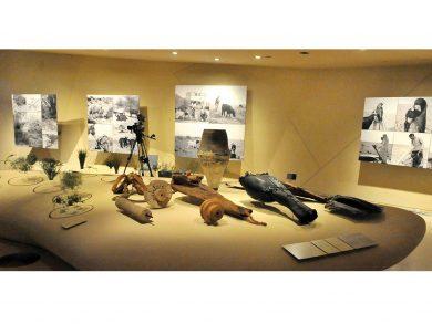 Photo of المتحف الوطني يُعيد فتح صالات العرض الدائمة