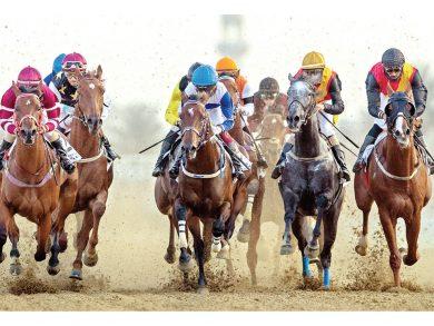 Photo of اليوم سباق الخيل رقم 15