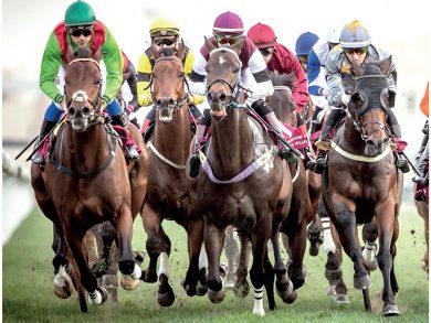 Photo of منافسات سباق الخيل على جوائز سباق الشيخ جوعان بن حمد .. اليوم