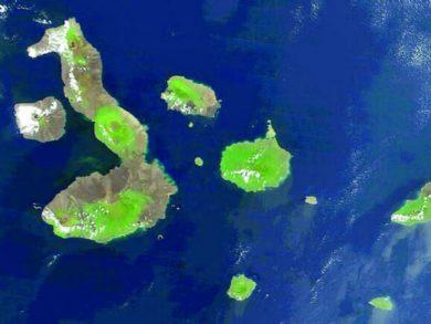 Photo of حل لغز النظام البيئي الاستثنائي لجزر غالاباغوس